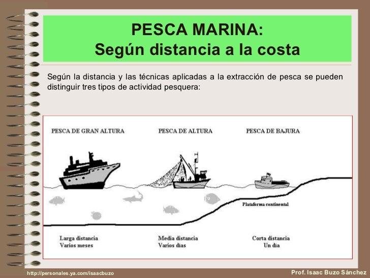 La pesca en España Slide 3