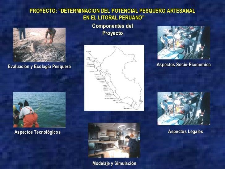 """Componentes del Proyecto PROYECTO: """"DETERMINACION DEL POTENCIAL PESQUERO ARTESANAL EN EL LITORAL PERUANO"""" Modelaje y Simul..."""