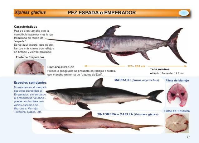 Pescados mariscos moluscos pdf 5-79 (1)