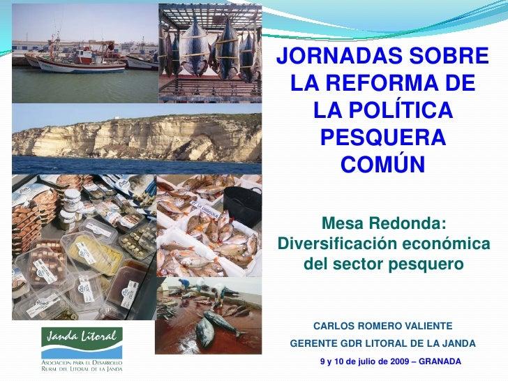 JORNADAS SOBRE LA REFORMA DE   LA POLÍTICA    PESQUERA     COMÚN     Mesa Redonda:Diversificación económica   del sector p...