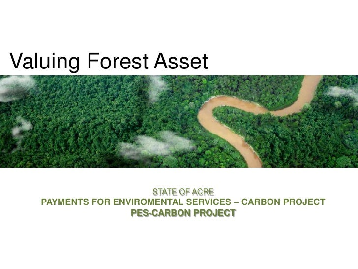 Valuing Forest Asset<br />STATE OF ACRE<br />PAYMENTS FOR ENVIROMENTAL SERVICES – CARBON PROJECT<br />PES-CARBON PROJECT<b...