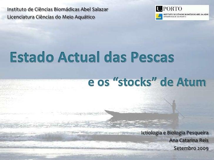 Instituto de Ciências Biomádicas Abel Salazar<br />Licenciatura Ciências do Meio Aquático<br />Estado Actual das Pescas<br...