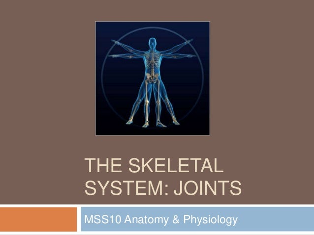 THE SKELETAL SYSTEM: JOINTS MSS10 Anatomy & Physiology