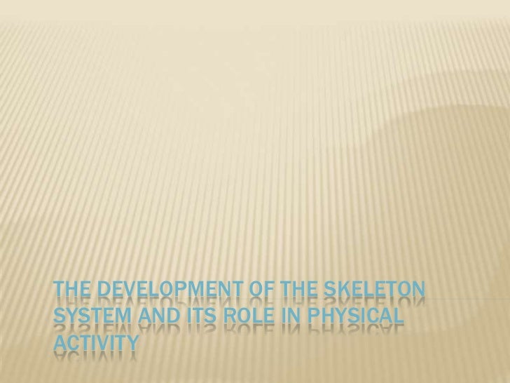 The development of the skeleton system and its role in physical activity<br />