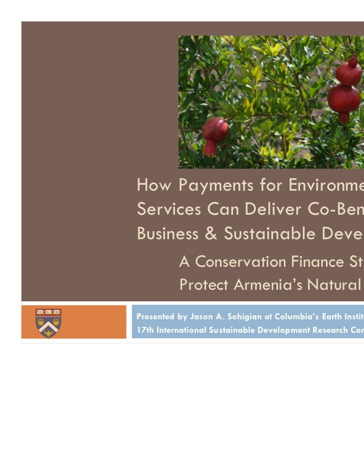 Photo by Hawk KhatcherianHow Payments for EnvironmentalServices Can Deliver Co-Benefits forBusiness & Sustainable Developm...