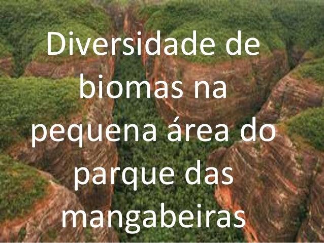 Diversidade de   biomas napequena área do   parque das  mangabeiras
