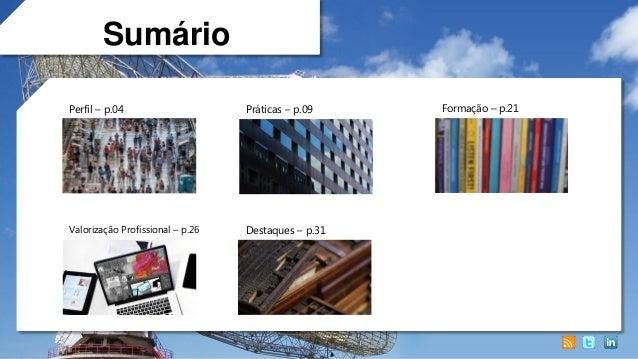 Profissional de Monitoramento, Mensuração e Social Analytics no Brasil (2013) Slide 3