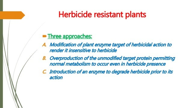 herbicide resistance Overview of the development of resistance to each of the major herbicide groups (amended for australian herbicide groups from dr ian heap, may 2006.