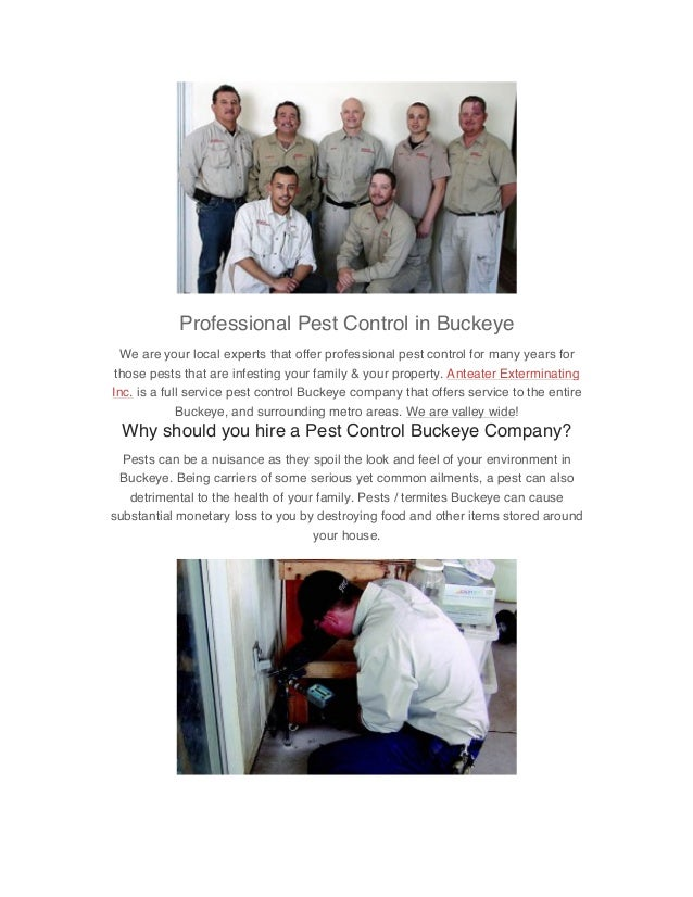 Professional Pest Control in Buckeye We are your local experts that offer professional pest control for many years for tho...