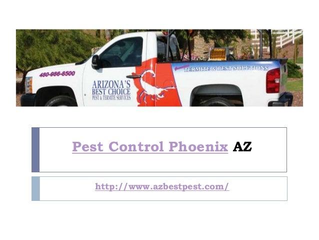 Pest Control Phoenix AZ  http://www.azbestpest.com/