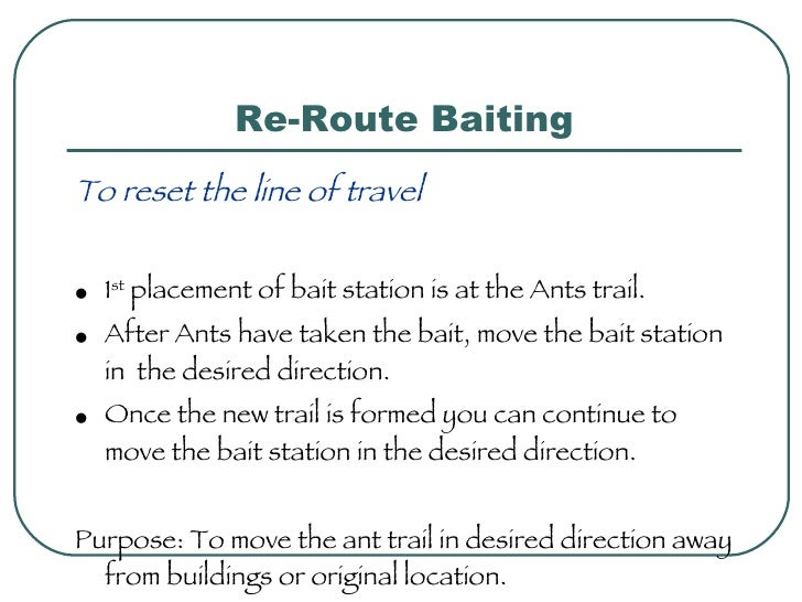 Re-Route Baiting <ul><li>To reset the line of travel </li></ul><ul><li>1 st  placement of bait station is at the Ants trai...