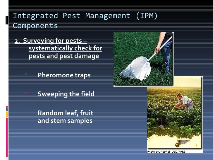 Integrated Pest Management (IPM)Components3. Encourage Beneficial Insect/Animal Populations     Use milder chemicals or s...