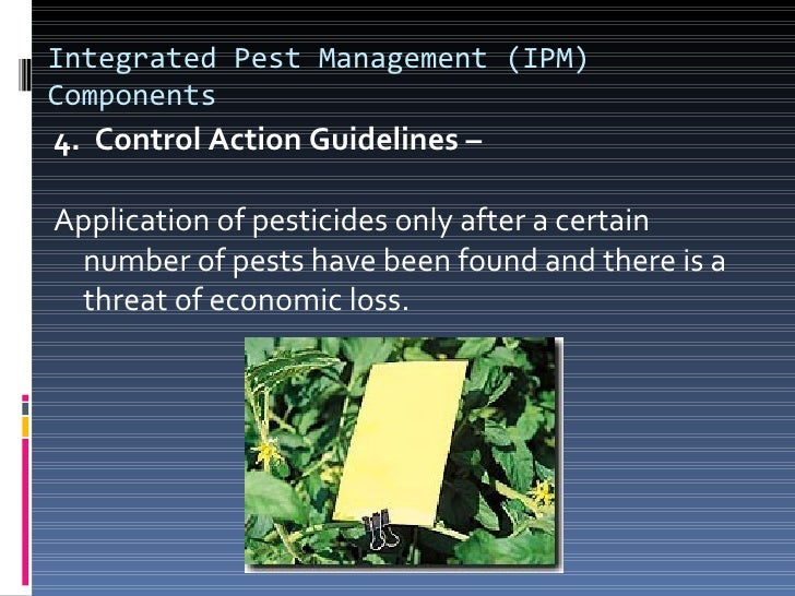 """Future Challenges? IPM – """"requires people to work smarter"""" dealing with  biology & ecology and utilizing…   Environmenta..."""