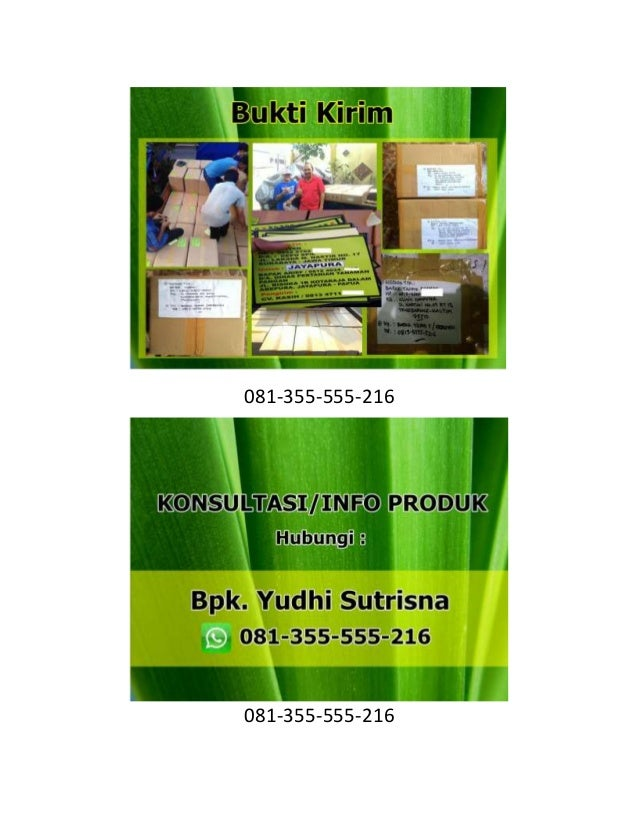 081-355-555-216 081-355-555-216