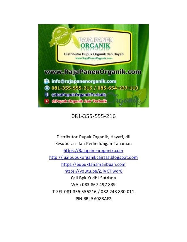 081-355-555-216 Distributor Pupuk Organik, Hayati, dll Kesuburan dan Perlindungan Tanaman https://Rajapanenorganik.com htt...