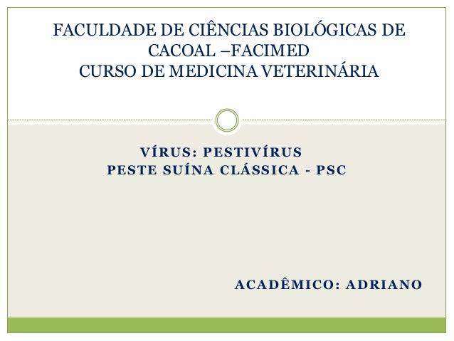 VÍRUS: PESTIVÍRUS PESTE SUÍNA CLÁSSICA - PSC FACULDADE DE CIÊNCIAS BIOLÓGICAS DE CACOAL –FACIMED CURSO DE MEDICINA VETERIN...
