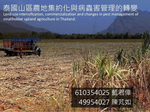 泰國山區農地集約化與病蟲害管理的轉變  Land use intensification, commercialization and changes in pest management of  smallholder upland agri...