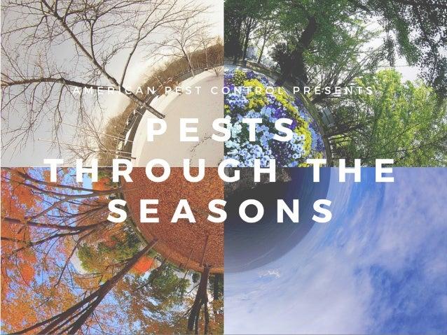American Pest Control: Pests Through the Seasons