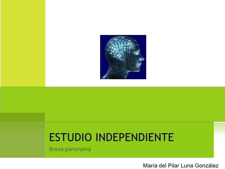 ESTUDIO INDEPENDIENTE María del Pilar Luna González