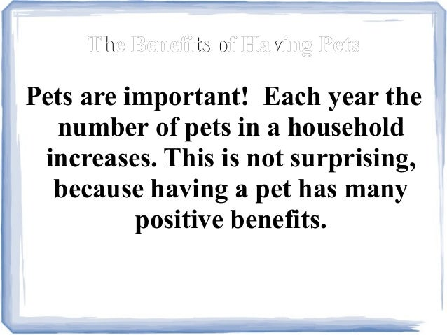 The advantages and disadvantages of having the pets