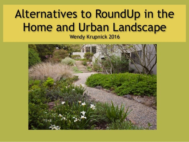 Alternatives to RoundUp in the Home and Urban Landscape Wendy Krupnick 2016
