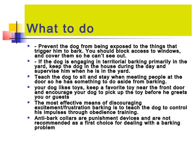 Pet Animal Management And Behaviour Dogs