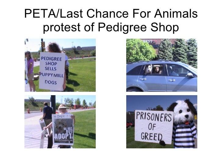 PETA/Last Chance For Animals protest of Pedigree Shop