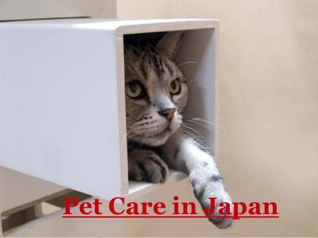 Pet Care in Japan