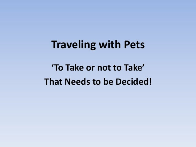 Traveling with Pets'To Take or not to Take'That Needs to be Decided!