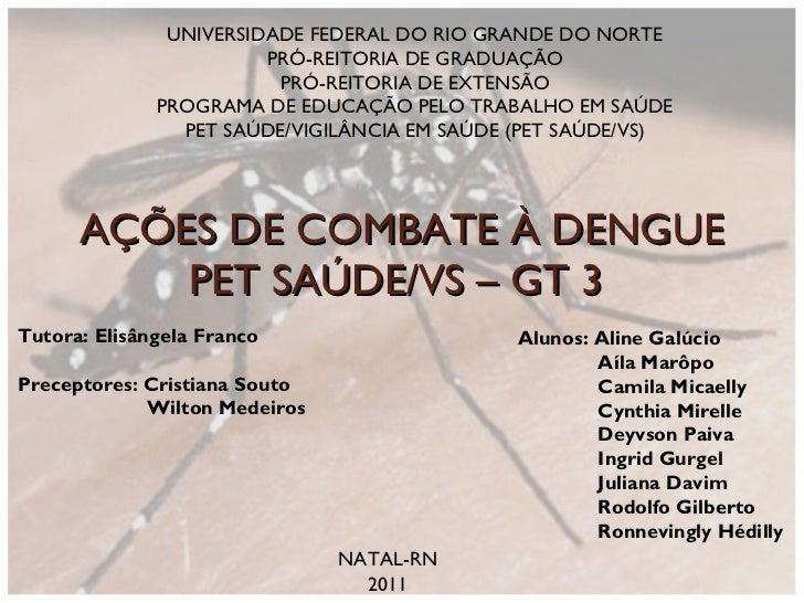 AÇÕES DE COMBATE À DENGUE PET SAÚDE/VS – GT 3  NATAL-RN 2011 Tutora: Elisângela Franco Preceptores: Cristiana Souto Wilton...