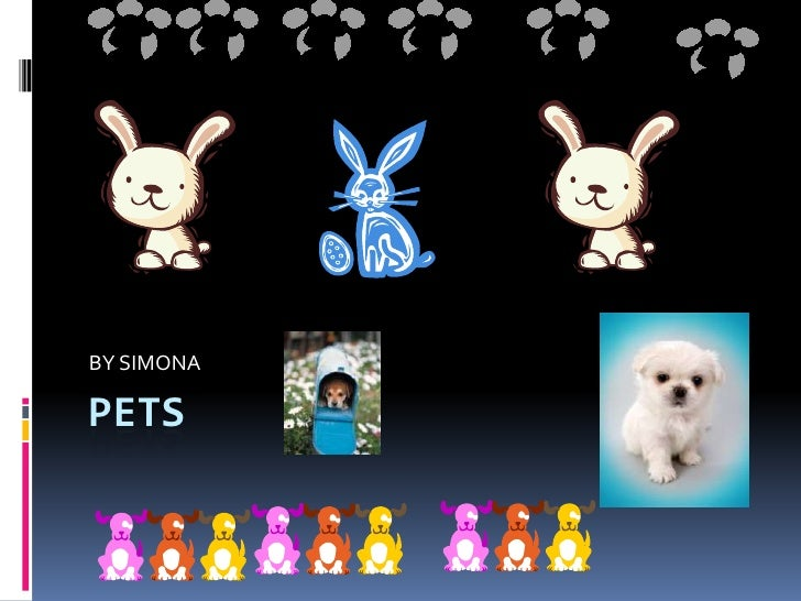 PETS <br />BY SIMONA<br />