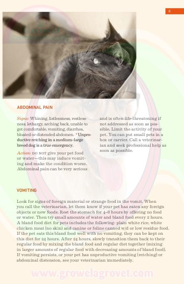 Pet Emergency Care Handbook