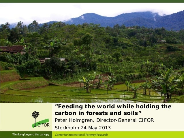 """""""Feeding the world while holding thecarbon in forests and soils""""Peter Holmgren, Director-General CIFORStockholm 24 May 2013"""