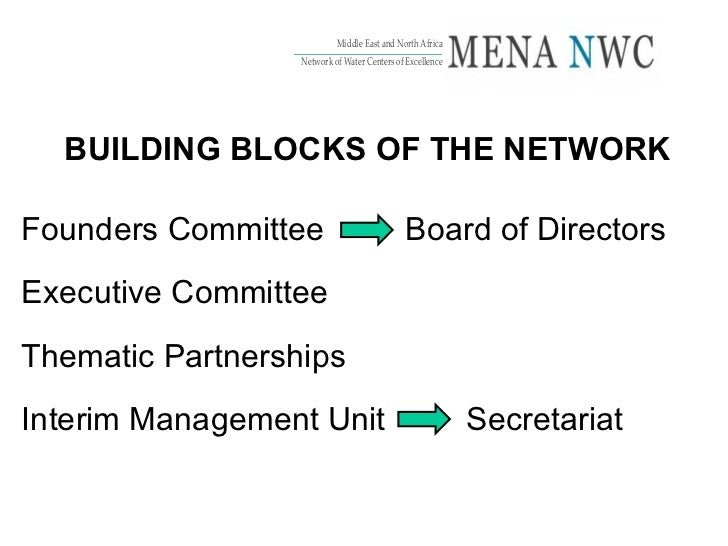 BUILDING BLOCKS OF THE NETWORK Founders Committee  Board of Directors Executive Committee Thematic Partnerships Interim Ma...