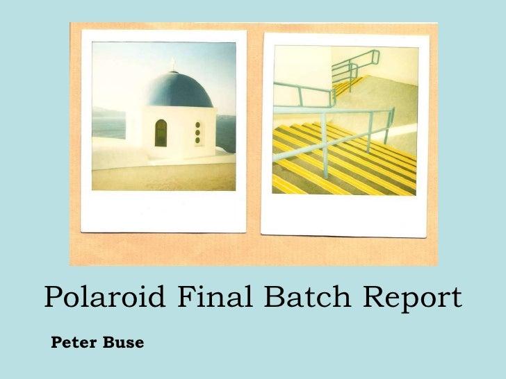 Polaroid Final Batch Report Peter Buse