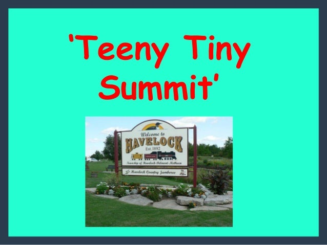 'Teeny Tiny Summit'