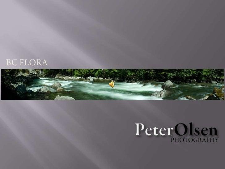 BC FLORA<br />PeterOlsen<br />PHOTOGRAPHY<br />