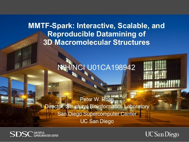 MMTF-Spark: Interactive, Scalable, and Reproducible Datamining of 3D Macromolecular Structures NIH/NCI U01CA198942 Peter W...