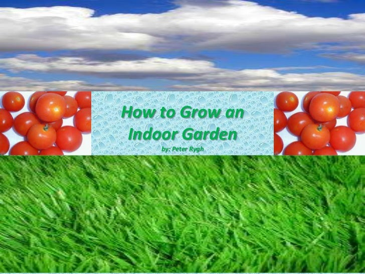 How to Grow an Indoor Garden    by: Peter Rygh