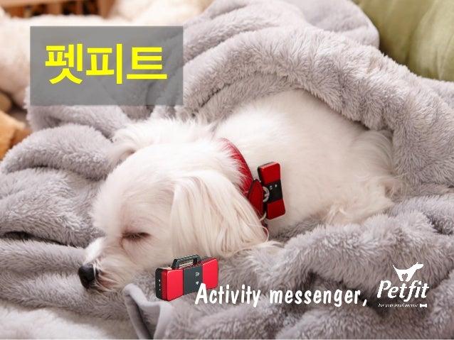 Activity messenger, 펫피트