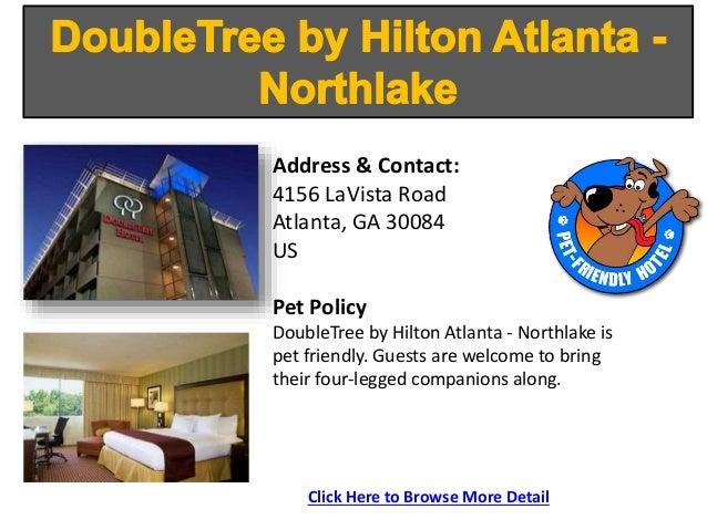 Pet Friendly Hotels Midtown Atlanta