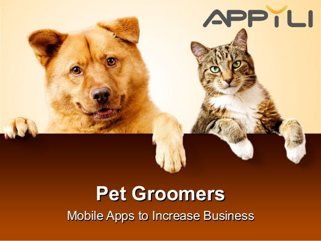 Dog grooming business viability case study