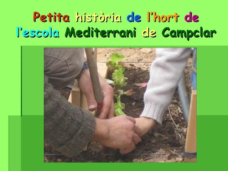 Petita   història   de   l'hort   de  l'escola  Mediterrani  de  Campclar