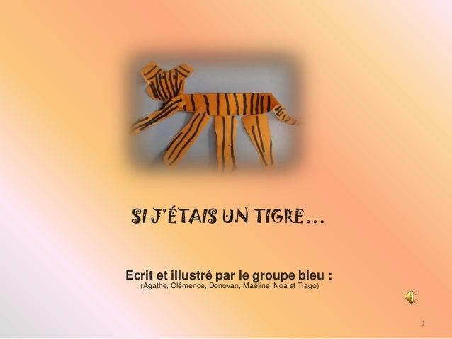 SI J'ÉTAIS UN TIGRE…Ecrit et illustré par le groupe bleu :  (Agathe, Clémence, Donovan, Maëline, Noa et Tiago)            ...