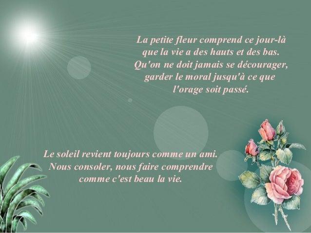 Petite fleur jo (1)