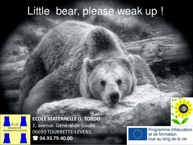 Little bear, please weak up ! ECOLE MATERNELLE O. TORDO 2, avenue Général de Gaulle 06690 TOURRETTE-LEVENS  04.93.79.40.00