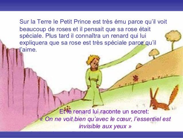 .Sur la Terre le Petit Prince est très ému parce qu'il voitbeaucoup de roses et il pensait que sa rose étaitspéciale. Plus...