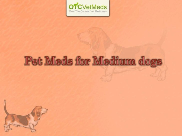 Grooming your dogis essential for his well-being. Brushingyour dog's coat regularly will help it toremain free from dirt.U...