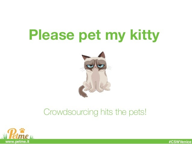 Please pet my kitty Crowdsourcing hits the pets! #CSWVenicewww.petme.it