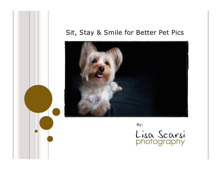 Sit, Stay & Smile for Better Pet Pics                      By: